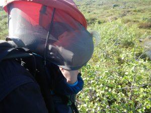 Schlafendes Kind in der Kraxe mit angelehntem Kopf