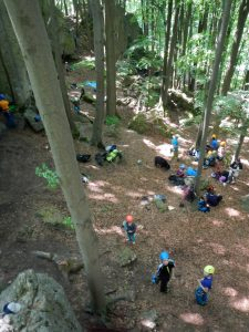 Klettergruppen mit Kindern und Jugendlichen beim Felsklettern