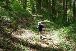Kleiner Junge rennt durch den Wald
