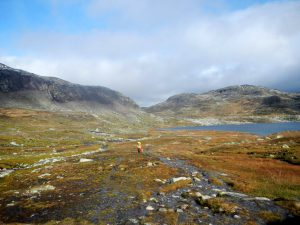 Nach dem Schnee: wandern über grüne Hügel!