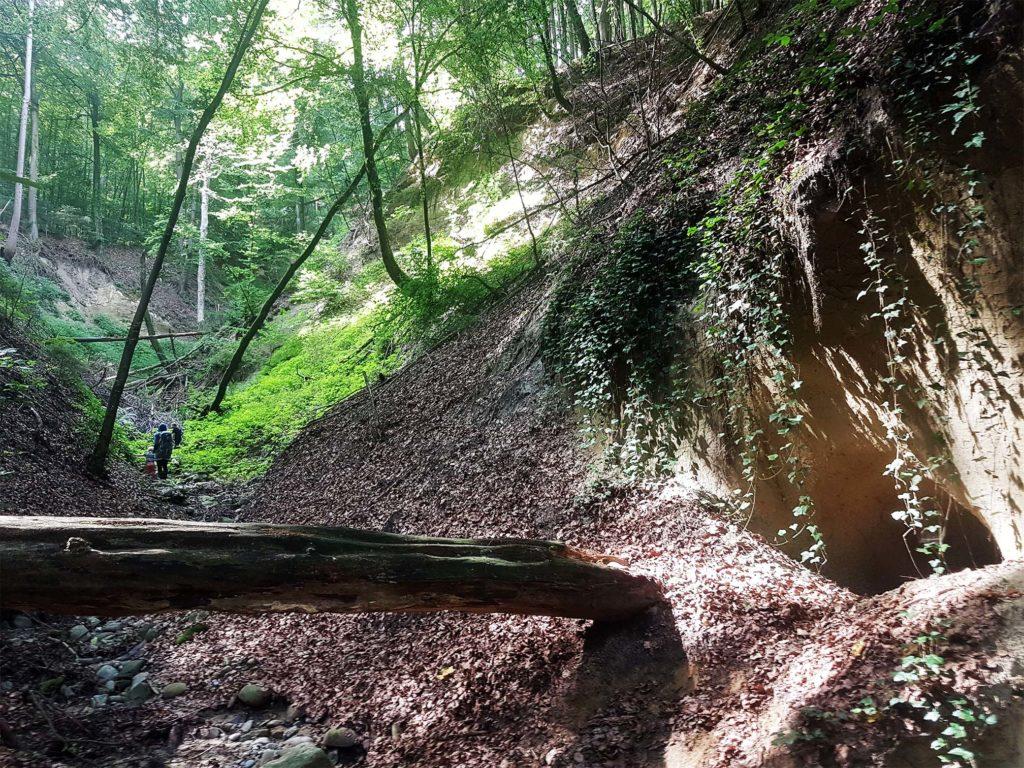 Höhle am Wegesrand