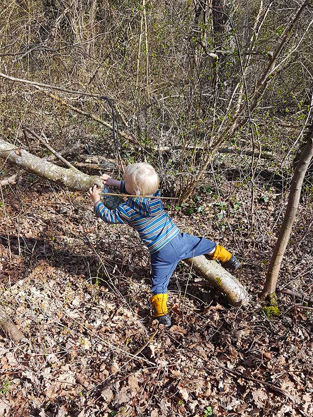 Ein kleines Kind versucht im Wald, einen Baumstamm hinauf zu klettern