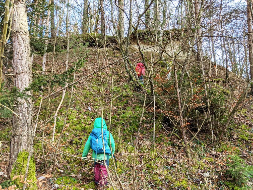 Kinder erforschen den Wald