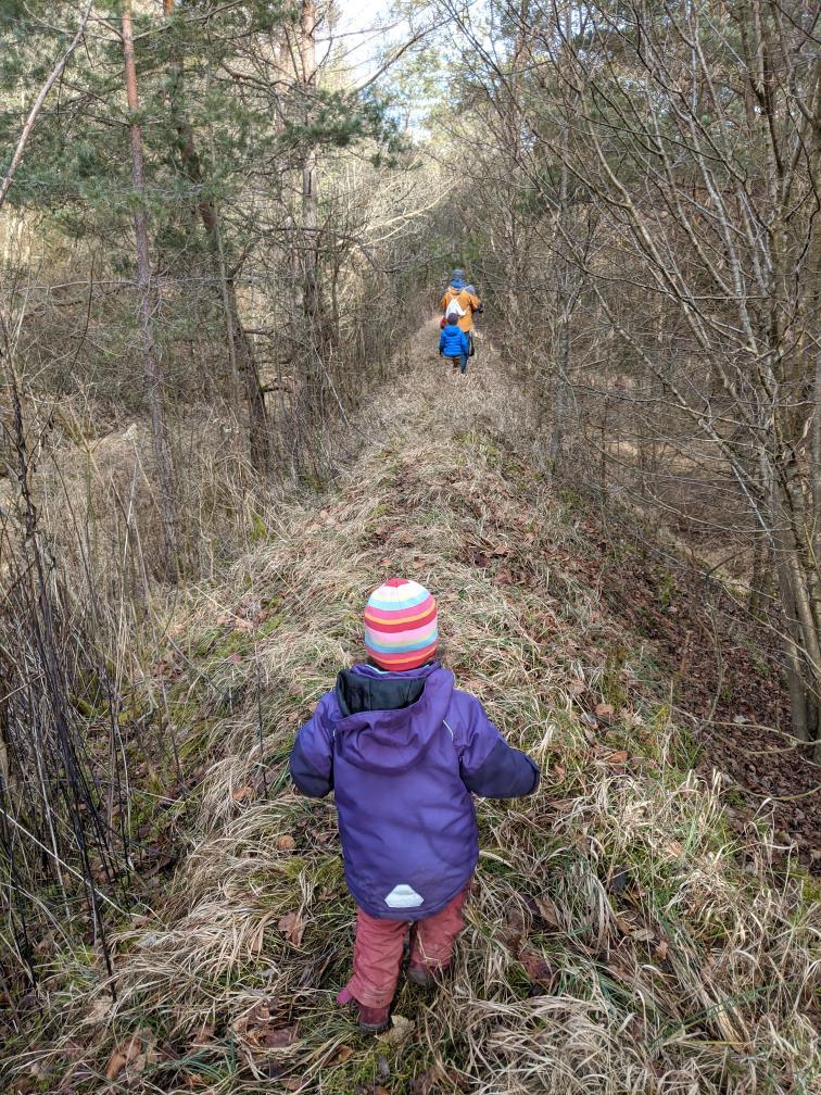 Kinder auf dem Damm im Wald