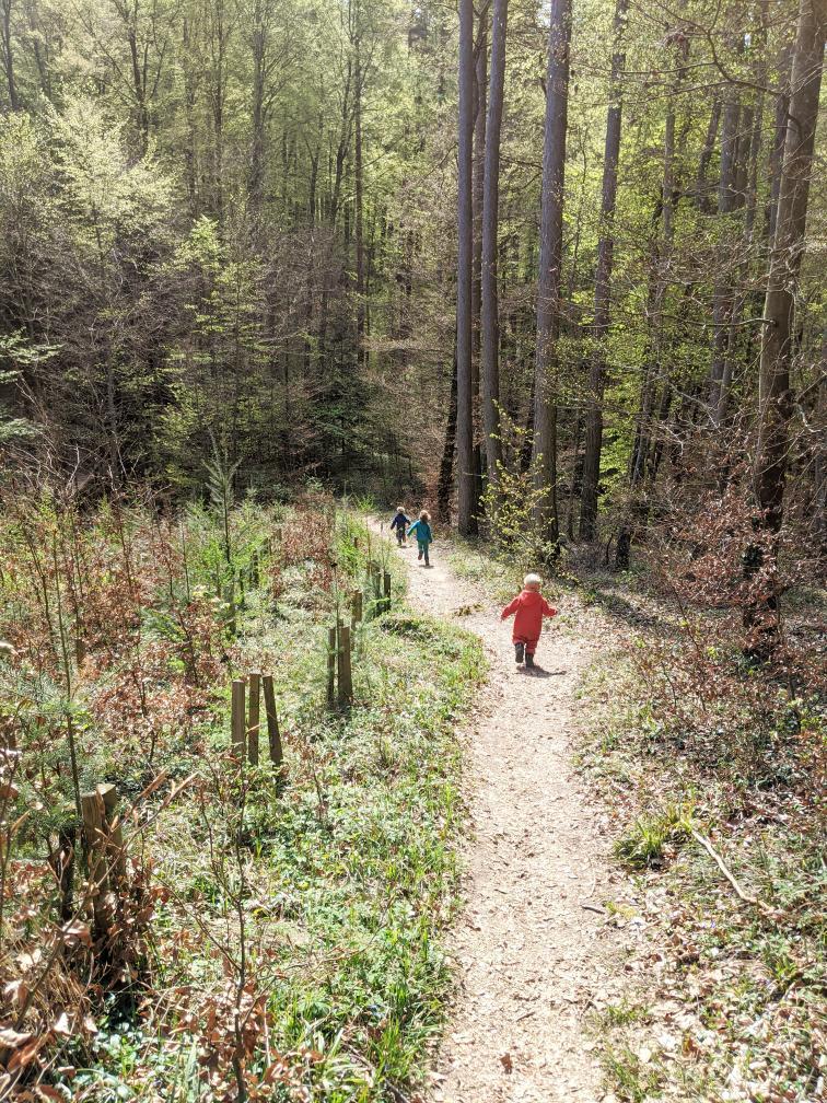 Kinder erforschen den Pfad im Wald