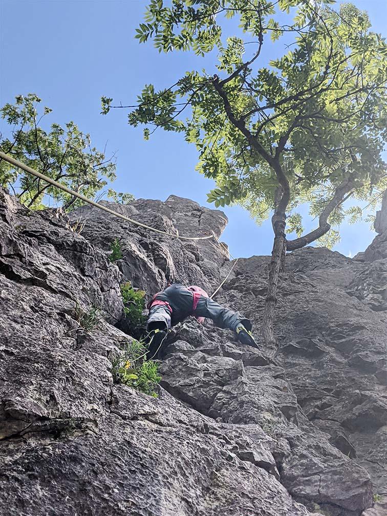 Ein Kind klettert im Klettergarten