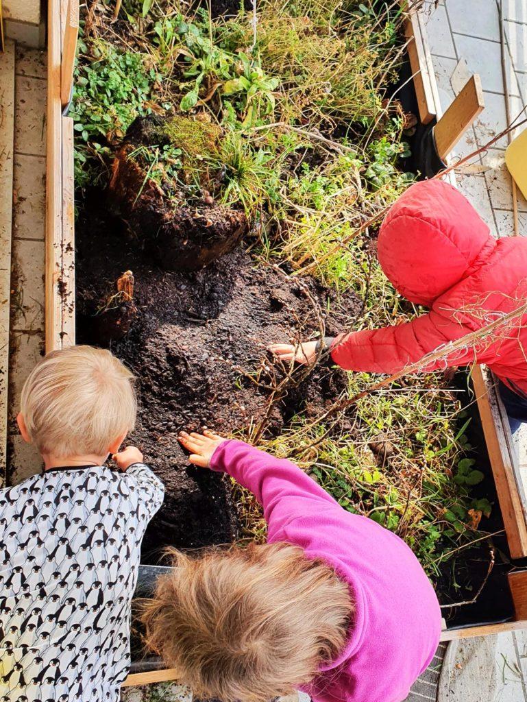 Die Kinder bereiten das Beet vor für die neue Aussaatt
