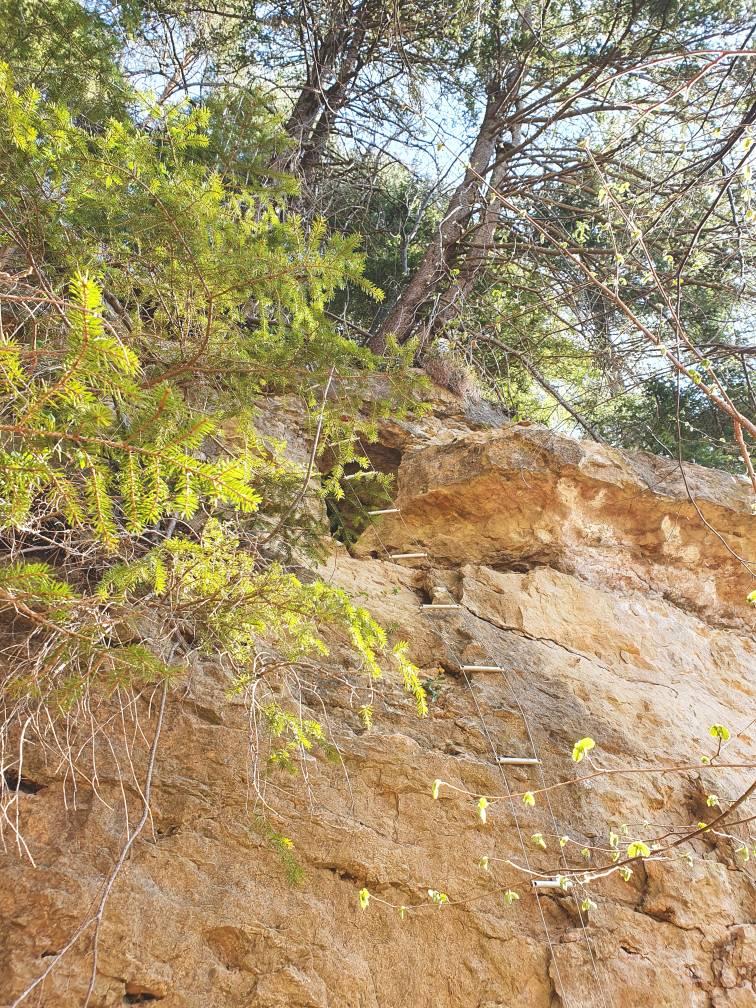 Leiter zur Höhle